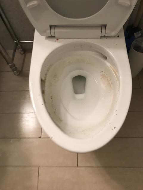 San Francisco, CA - Toilet clog