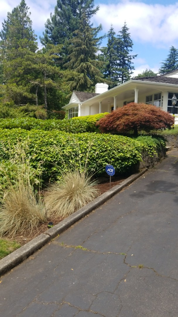 Portland, OR - Sewer line replacement