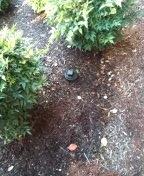 Hillsboro, OR - Sewer inspection here in Hillsboro oregon