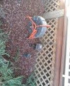Beaverton, OR - Sewer inspection in Sherwood Oregon