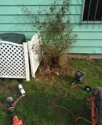 Milwaukie, OR - Milwaukee, sewer line, sewer inspection.