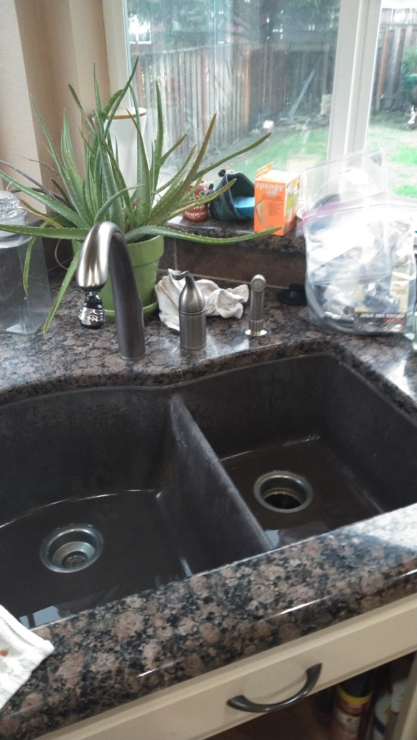 Troutdale, OR - Kitchen sprayer replacement
