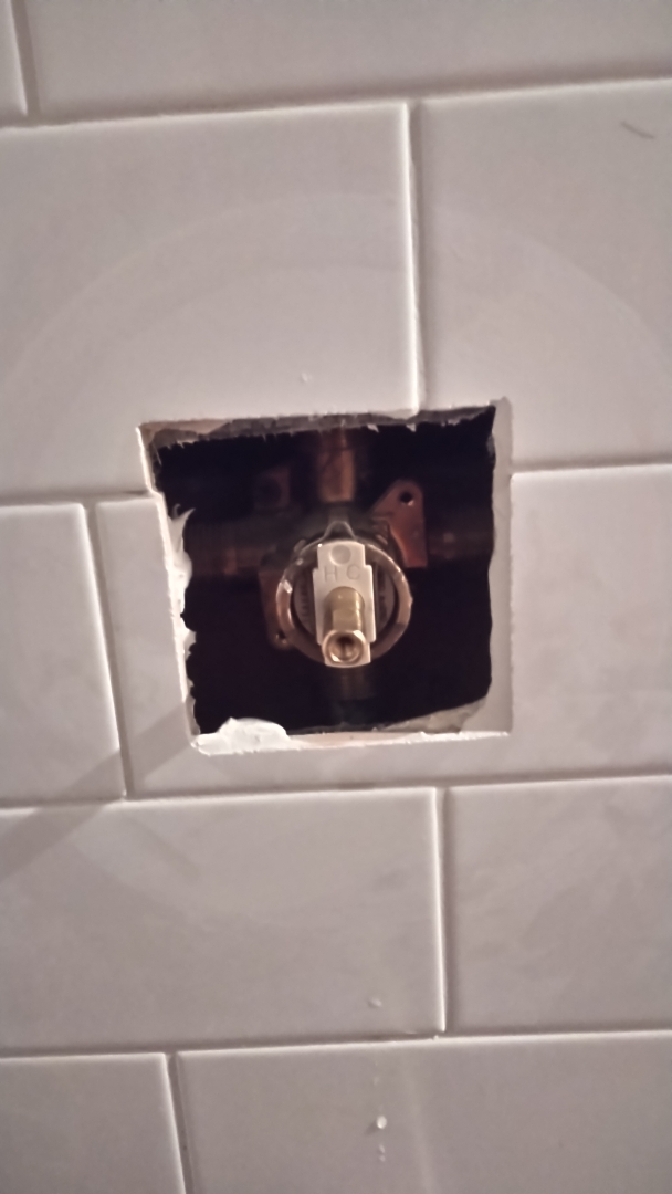 Portland, OR - Replaced shower cartridge