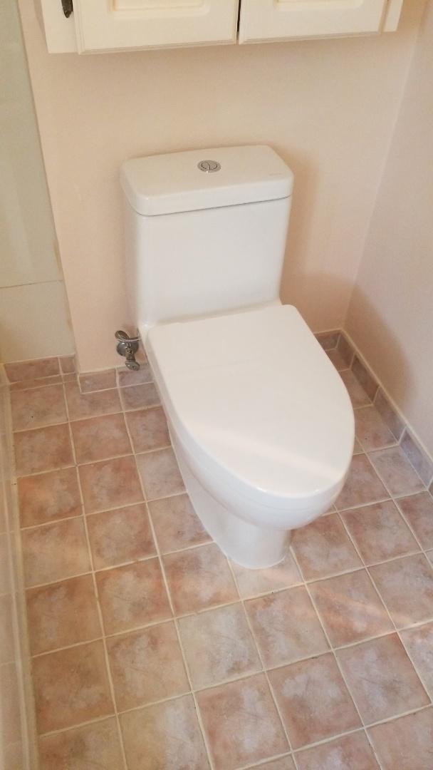 Vancouver, WA - Toilet installation
