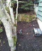 Beaverton, OR - Beaverton, sewer line, sewer inspection