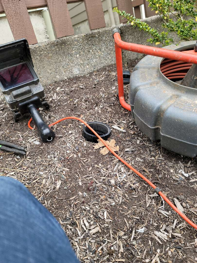 Molalla, OR - Sewer inspection