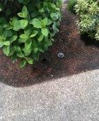 Beaverton, OR - Wilsonville, sewer line, sewer inspection.