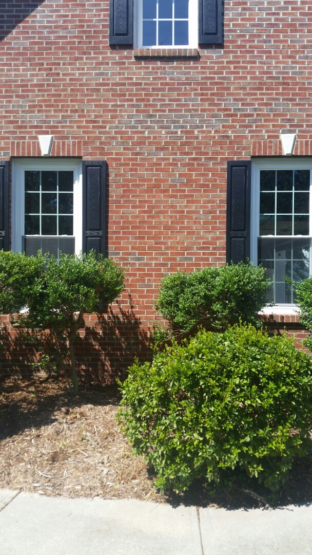 Wake Forest, NC - Removed 2 damaged vinyl replacement windows and replaced with 2 new vinyl replacement windows. Low e and argon gas. Also replacing existing front door with new 3 panel steel door