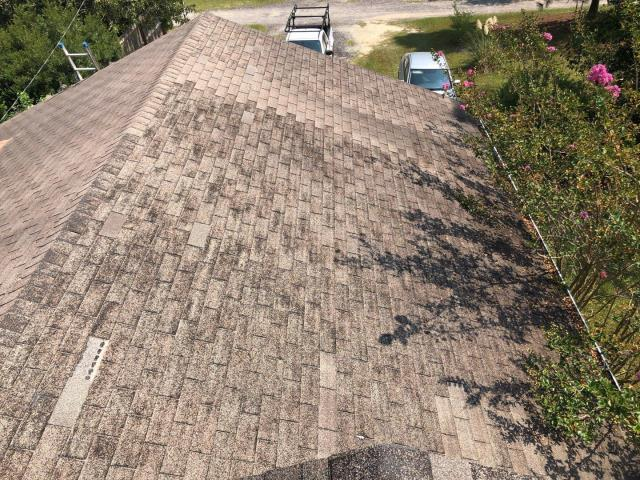 Pelion, SC - Can't wait to see what this roof looks like once Vista Roofing has replaced these old worn out shingles! (Pelion, SC)