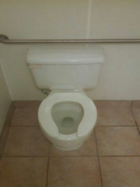 Harper Woods, MI - toilet repair