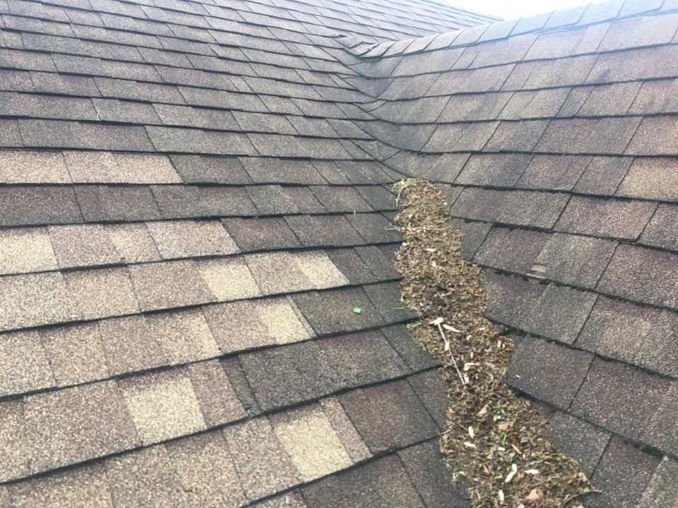 Indianapolis, IN - Roof inspection