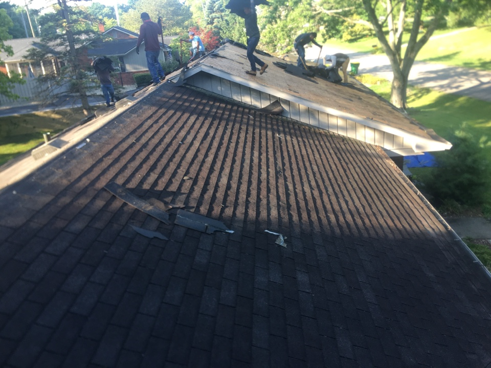 Zionsville, IN - Roof tear off #2
