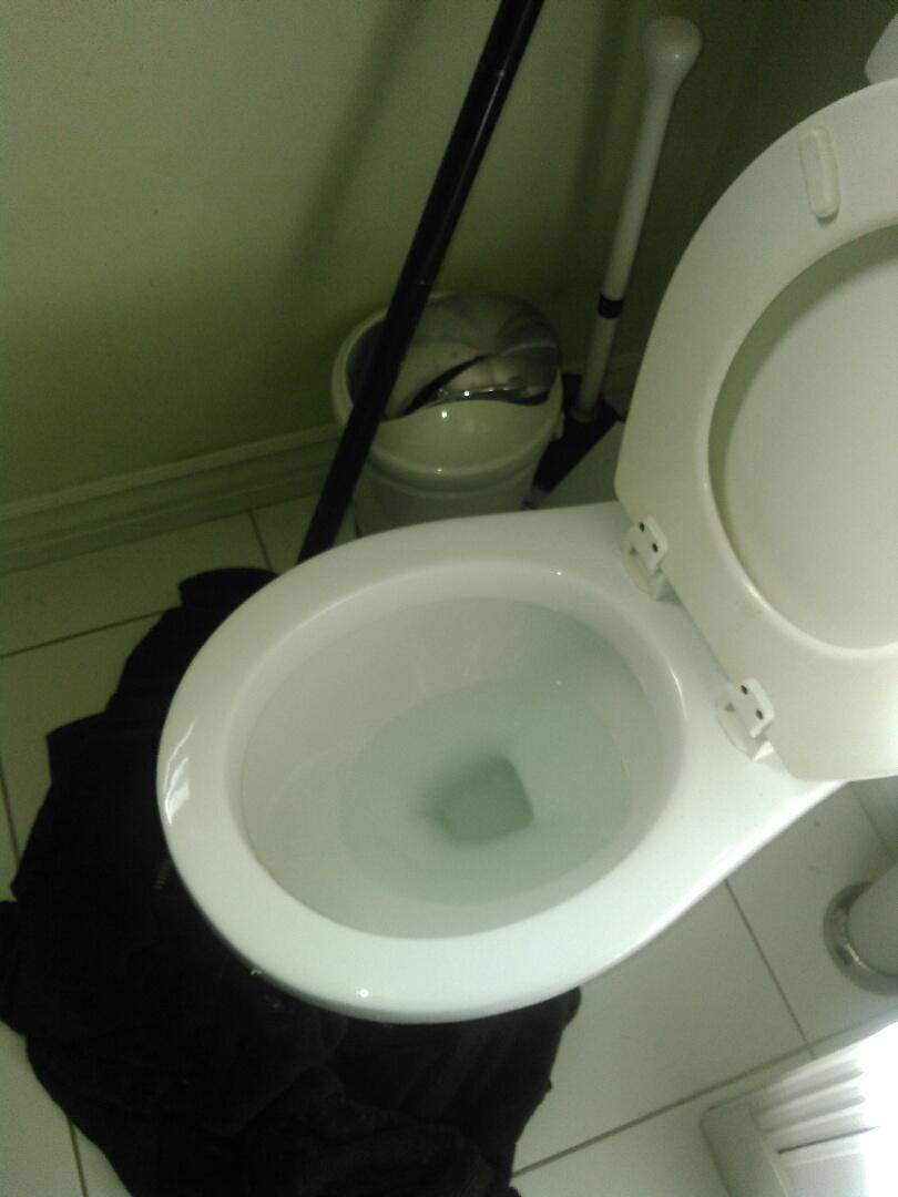 Altadena, CA - Toilet stoppage