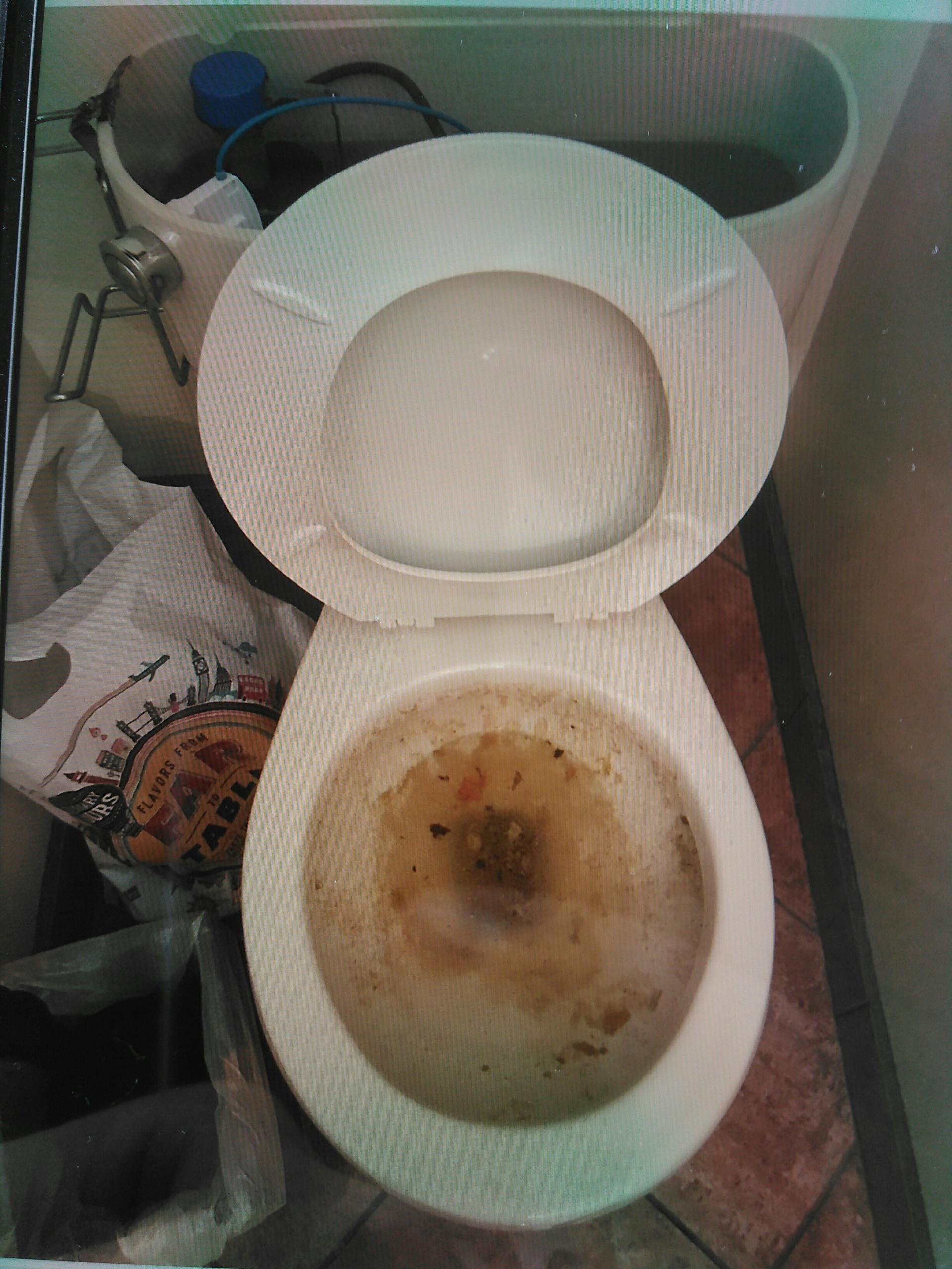 San Dimas, CA - Toilet stoppage