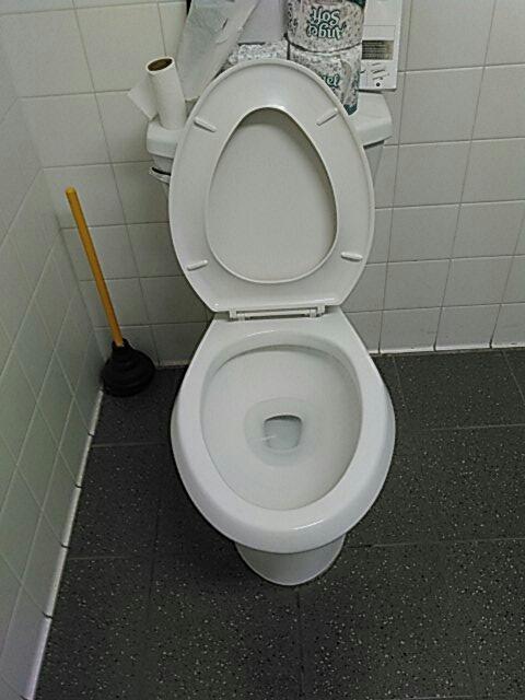 Pomona, CA - Toilet stoppage