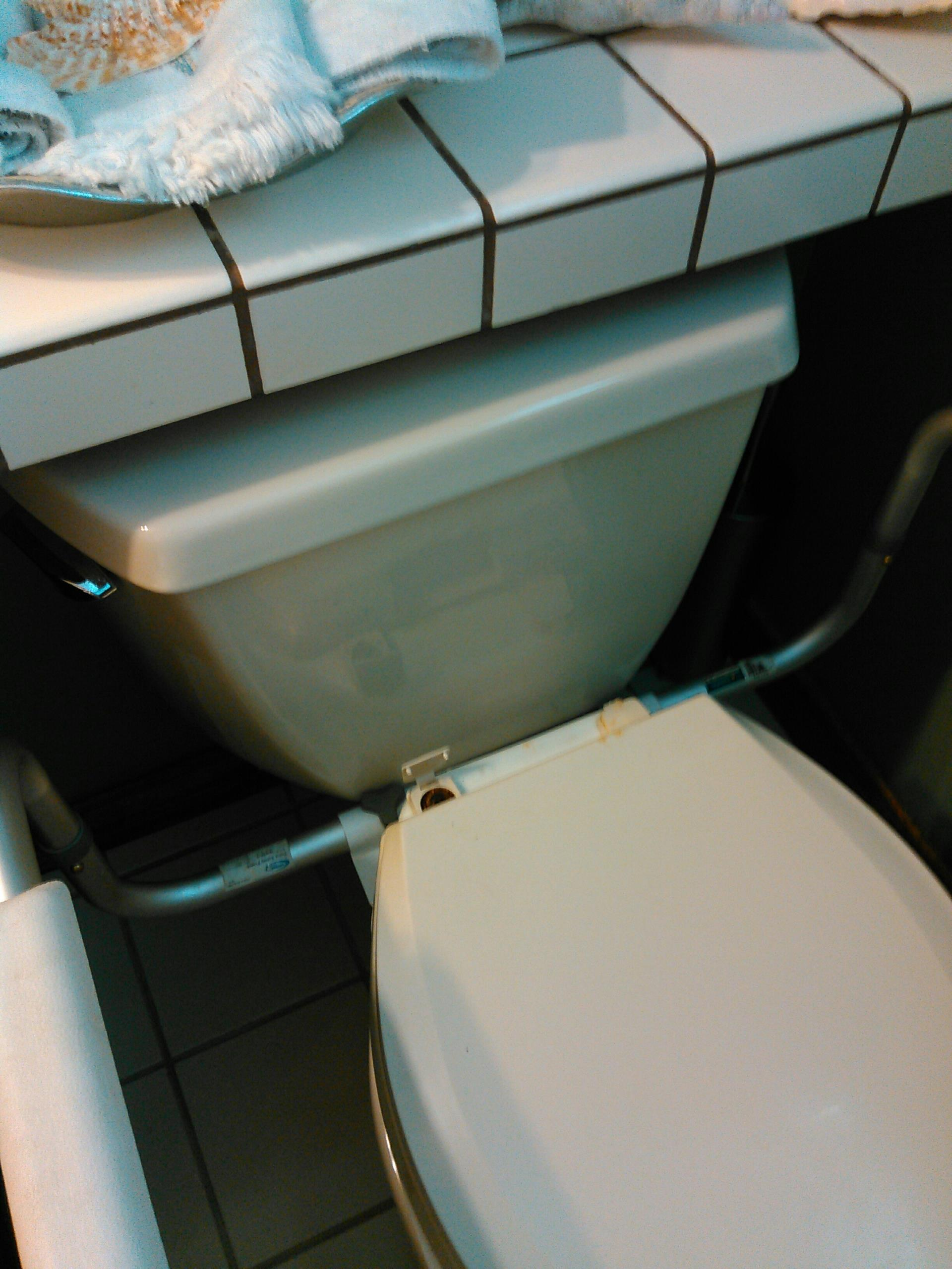 Thousand Oaks, CA - Repair both upstairs and downstairs toilets.