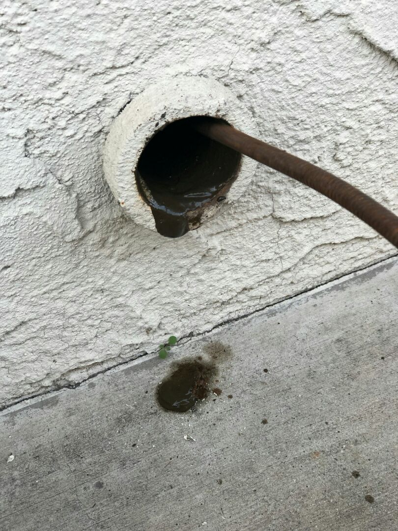 Pomona, CA - Laundryroom clogged