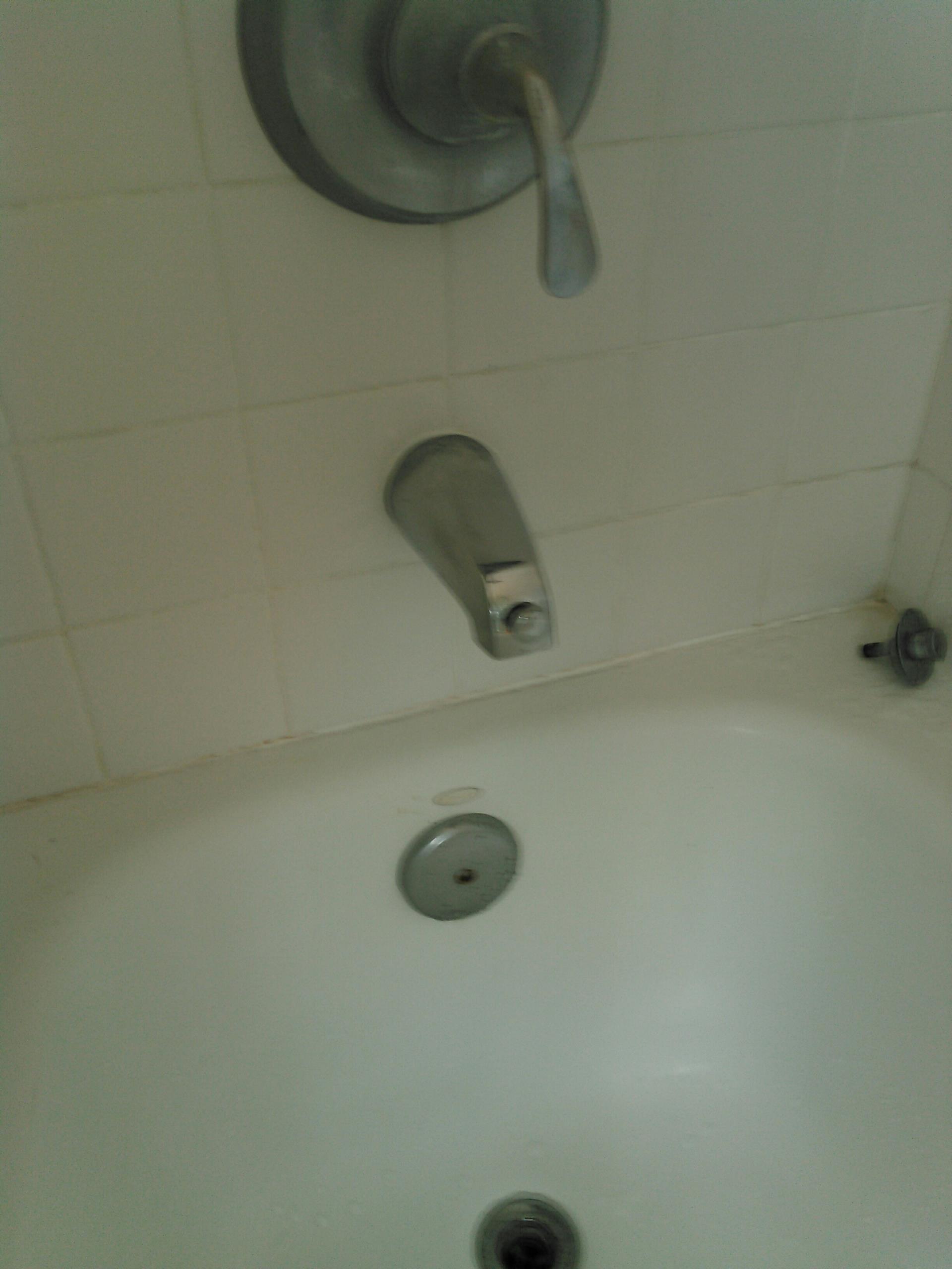 Thousand Oaks, CA - Install new diverter tub spout.