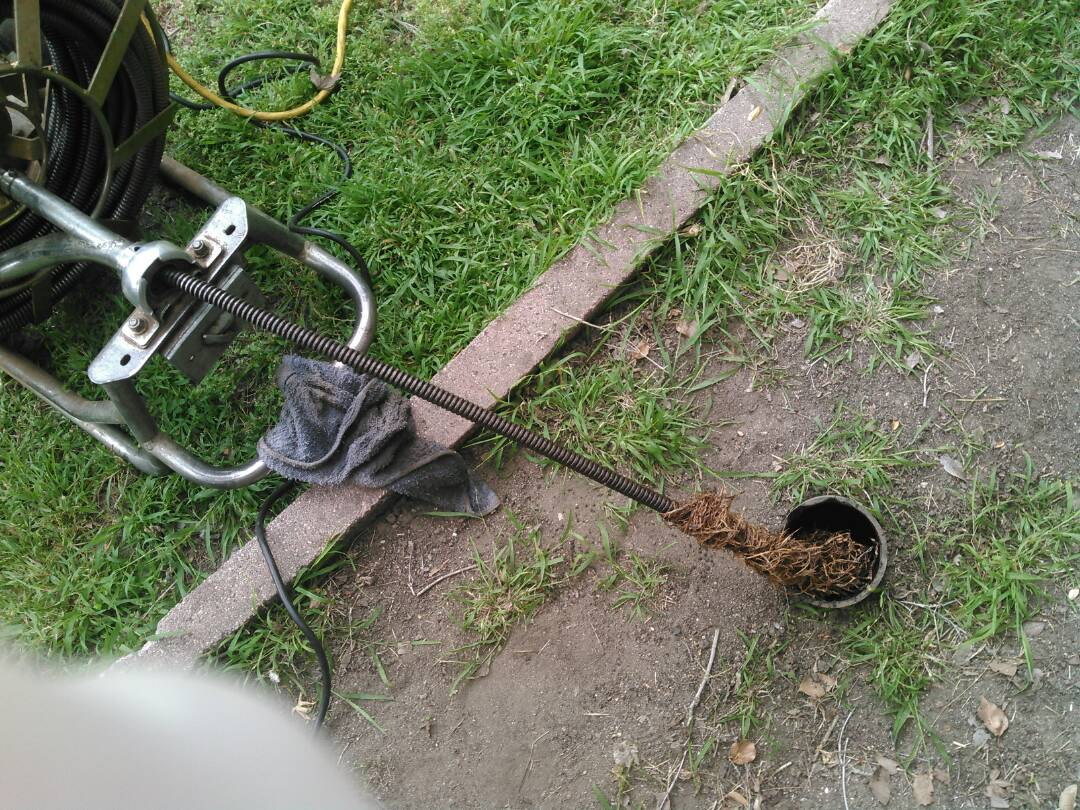 Glendale, CA - Uccluged main sewer line and free estimates for repairs