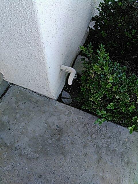 Coto de Caza, CA - Toilet repair