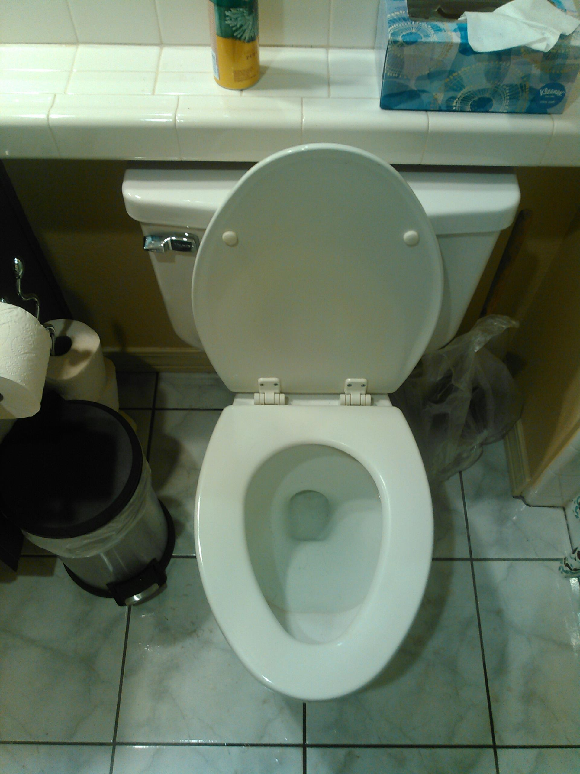 Rancho Cucamonga, CA - Toilet stoppage