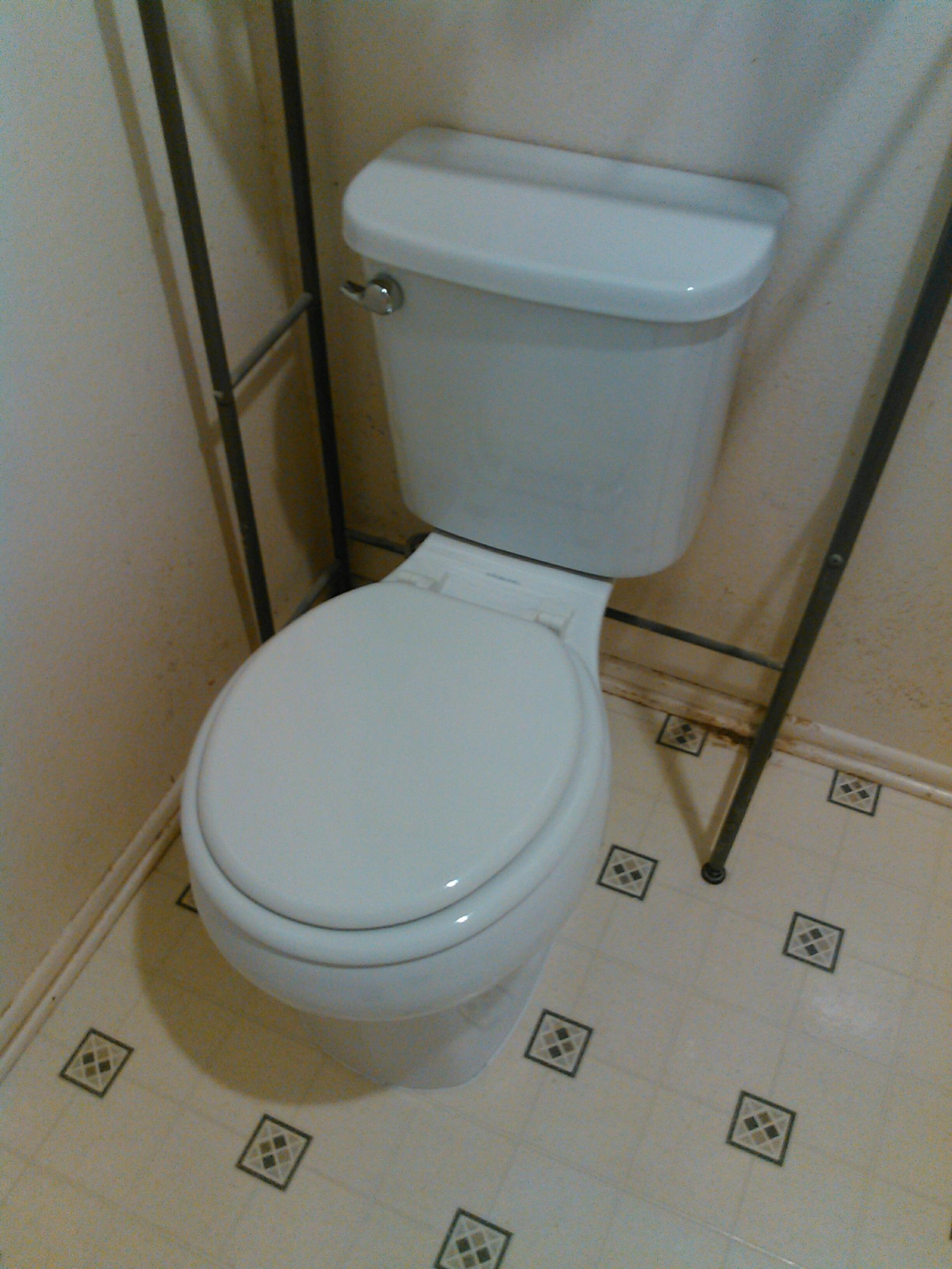 Los Angeles, CA - Install new toilet in master bathroom.