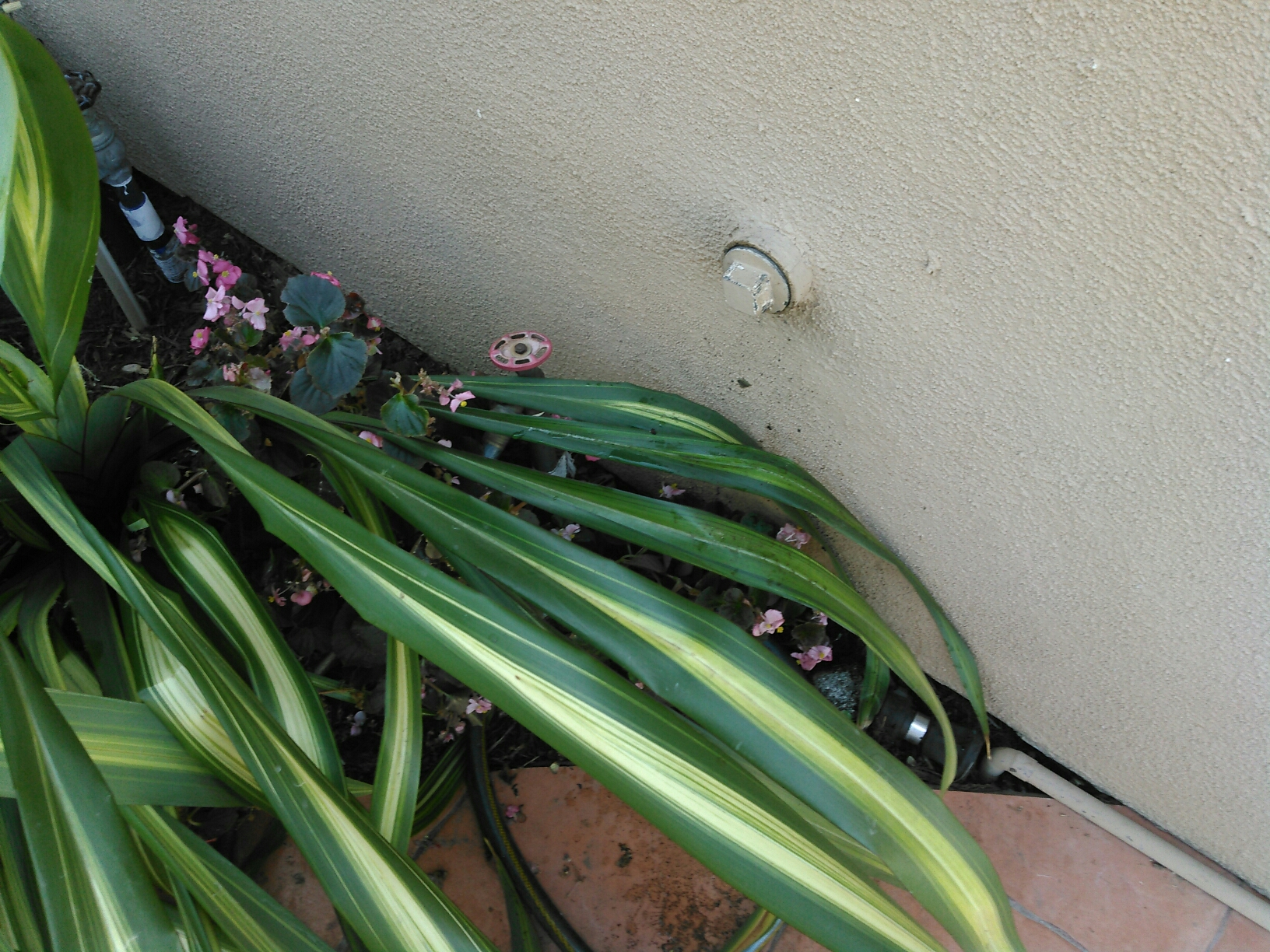 """La Verne, CA - Cleared out kitchen sink stoppage from exterior 2"""" inch clean out"""