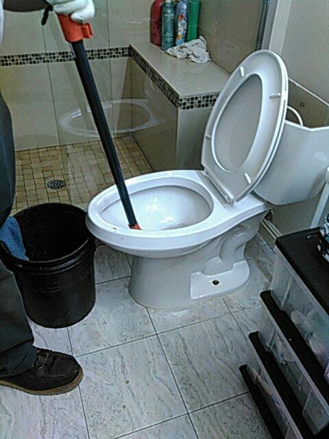 Irvine, CA - Toilet stoppage