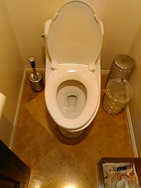 Laguna Beach, CA - Cleared toilet clog