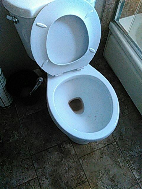 Upland, CA - Toilet stoppage