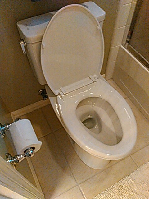 Huntington Beach, CA - Replaced toilet and seat