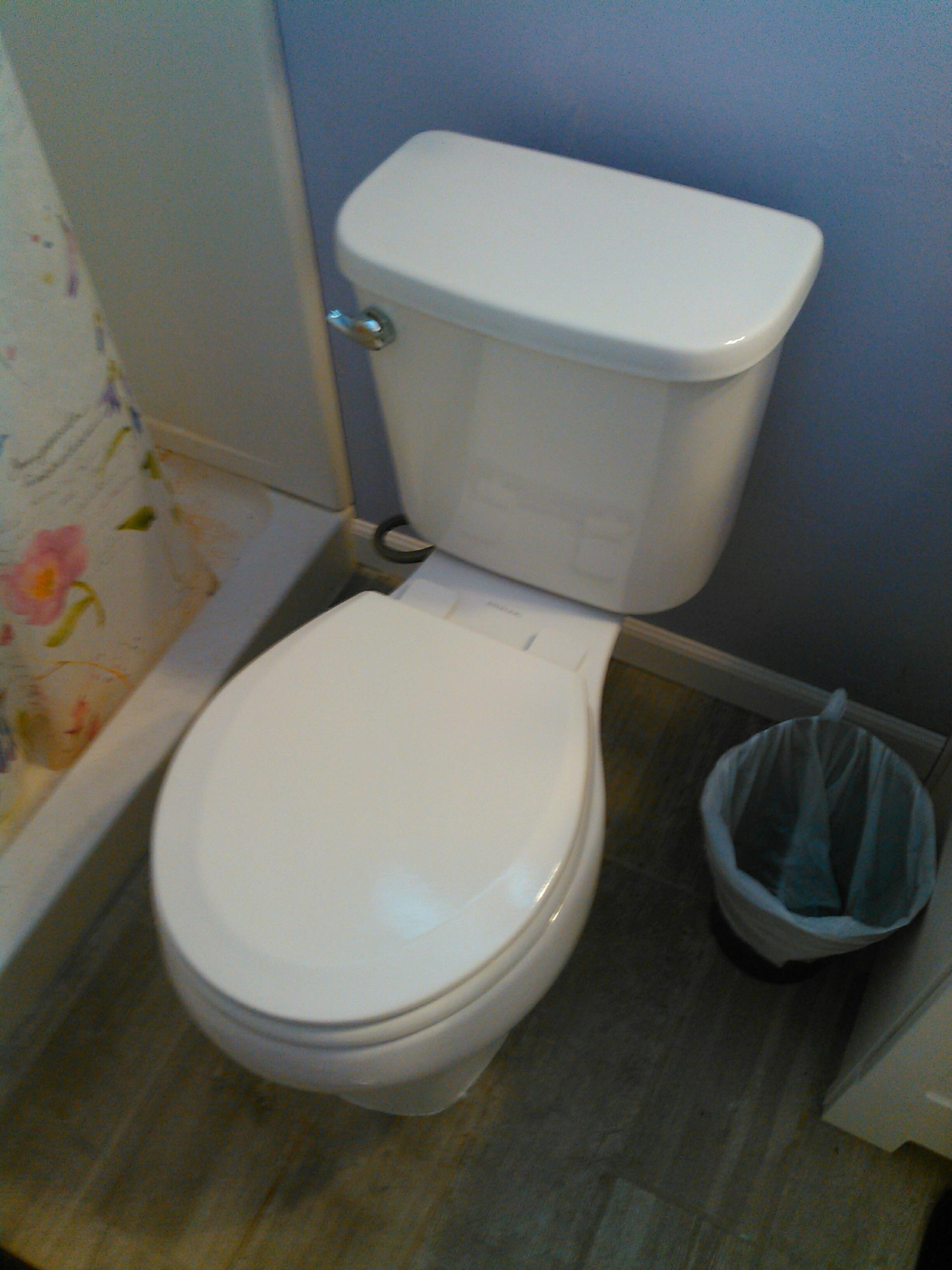 Thousand Oaks, CA - Install new toilet in upstairs master bathroom.
