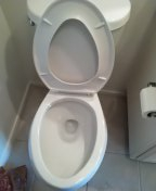 Laguna Woods, CA - Snaked toilet