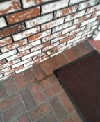 Huntington Beach, CA - Cleared and hydrojetted washing machine drain