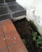 Hacienda Heights, CA - Slab leak coming out from under foundation
