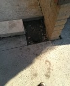 Mission Viejo, CA - Cast iron clean-out need replacing