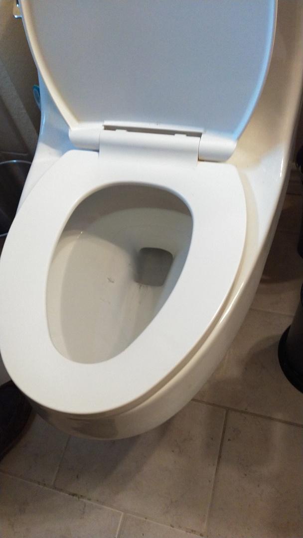 La Verne, CA - Toilet stoppage