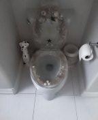 Coto de Caza, CA - Leak in the ceiling
