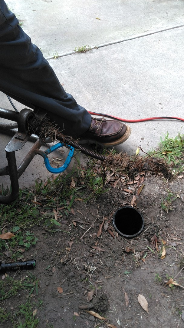 Westminster, CA - Run cable in mainline to clear roots