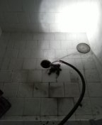 Claremont, CA - Tub and shower stoppage combo stoppage