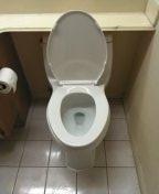 Laguna Niguel, CA - Install new toilet