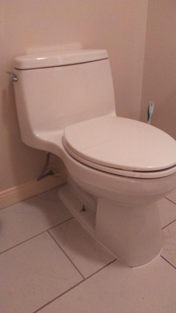 Manhattan Beach, CA - Toilet Install