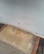 San Clemente, CA - Kitchen drain stoppage