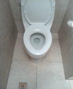Newport Beach, CA - Toilet reset