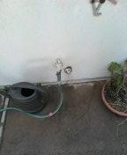 Westminster, CA - Snake kitchen drain