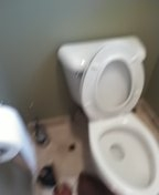Coto de Caza, CA - Toilet stoppage