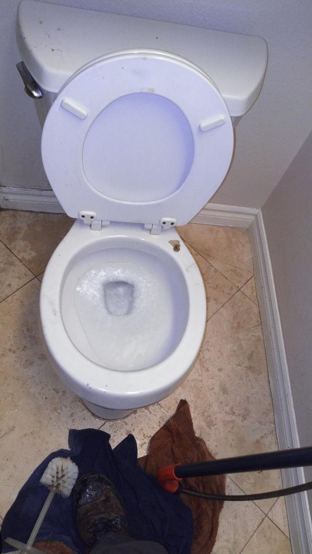 Walnut, CA - Toilet stoppage