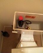 Newport Beach, CA - Toilet repair