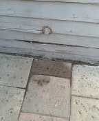 Pasadena, CA - Kitchen sink stoppage