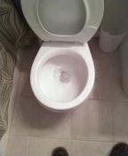 Laguna Hills, CA - Toilet stoppage